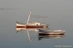 barques ile Kerkennah Tunisie