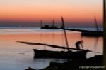 ile Kerkennah Tunisie